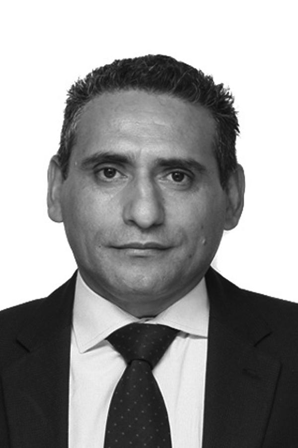 Ingeniero Cesar Melean